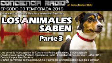 Photo of 'LOS ANIMALES SABEN' parte 3, Conciencia Radio, Temporada 9, Episodio 3, Año 2019