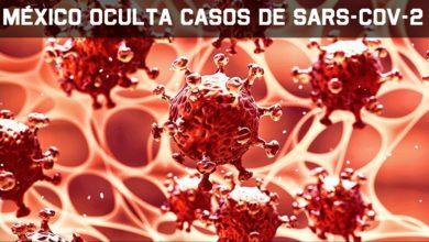 Photo of CORONAVIRUS: Senador mexicano acusa al gobierno ocultamiento de casos de positivos de coronavirus